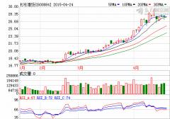 杉杉股份一季度业绩增15倍 收益来自出售宁波银行股权