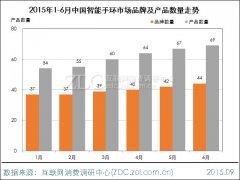 2015年上半年中国智能手环市场研究报告