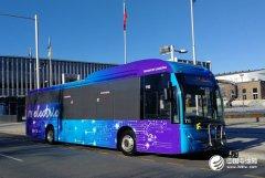 澳大利亚绿色公共交通政策参与者 比亚迪电动大巴交付堪培拉运营