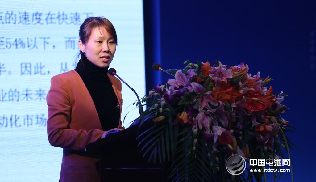 东莞杉杉黄继宏:5V级电解液技术开发进展与市场分析