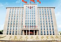 多氟多新能源:中国新能源全产业链锂想峰会