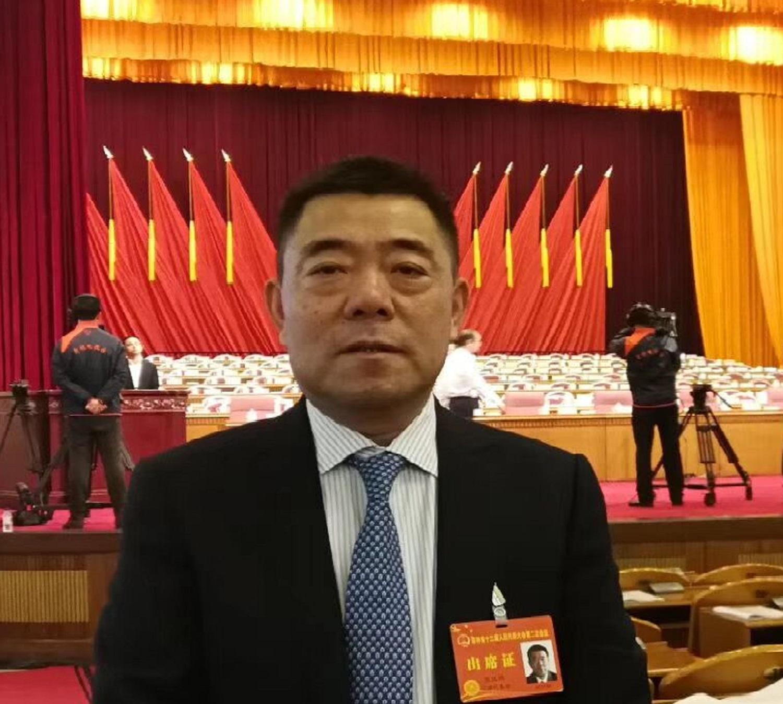 人大代表张汉鸿:东北三省发展新能源汽车产业集群的建议