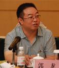郭龙,四川长虹新能源科技有限公司总经理