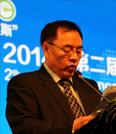 其鲁  北京大学新能源材料与技术实验室主任