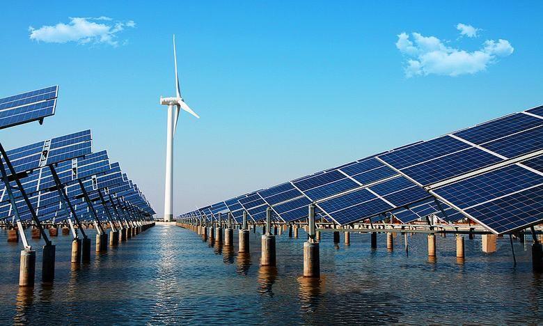"""""""渔光一体""""将新能源发电与水产养殖相结合"""