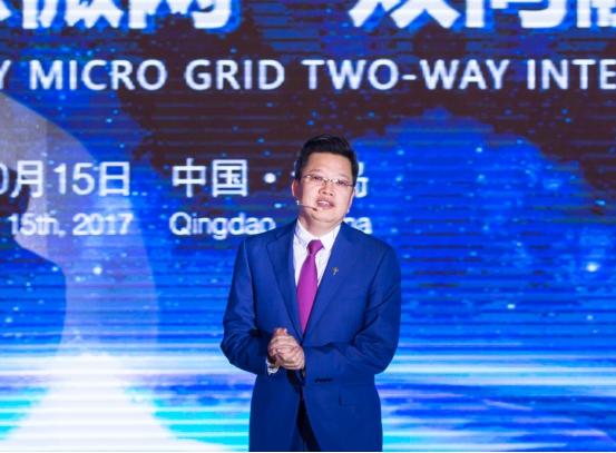 """特锐德发布""""汽车充电网""""与""""新能源微网""""双向融合系统"""