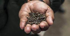 一年内价格翻番 为何各大公司都在抢夺钴材料?
