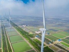 62家新能源公司发布中报预告:近七成业绩预喜