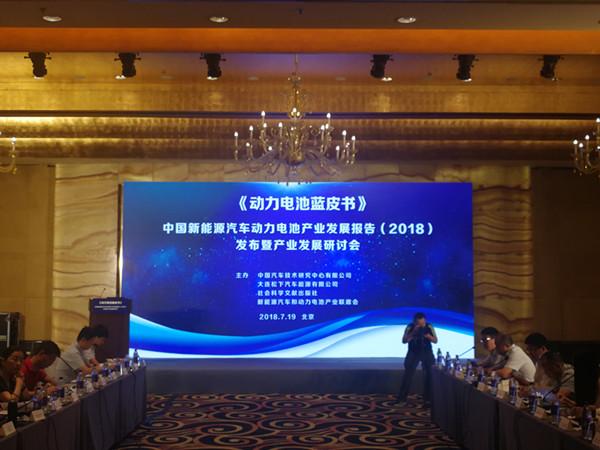 邢丹敏:我国燃料电池已初步具备商业化应用