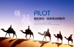 骆驼股份上半年铅酸电池销量近1200万KVAH 锂电池产能20亿WH