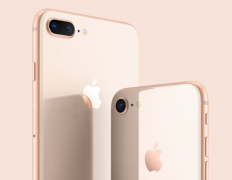 苹果下调业绩预期 库克称主因是大中华区iPhone收入降低