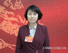 杨艳:进一步加大对镍钴资源综合利用的支持力度