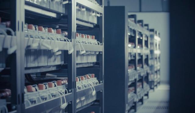 雷诺2025年拟推无钴固态电池  能否突破技术和资源制约?