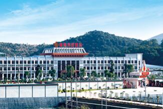 推动年产2万吨高精度电子铜箔项目实施 超华科技拟新设子公司
