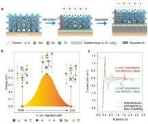 中国科大等在金属卤化物钙钛矿导锂层稳定锂电池方面取得进展