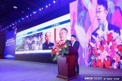苏继桃:宁乡高新区储能材料产业规模已经突破100亿元