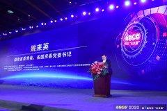 姚来英:湖南省已拥有规上电池产业链企业近100家