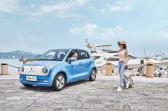 长城汽车新能源品牌欧拉1月份销售新车10260辆 同比劲增689%