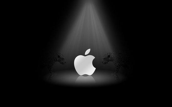 传言苹果考虑收购特斯拉 或投资特斯拉的电池工厂