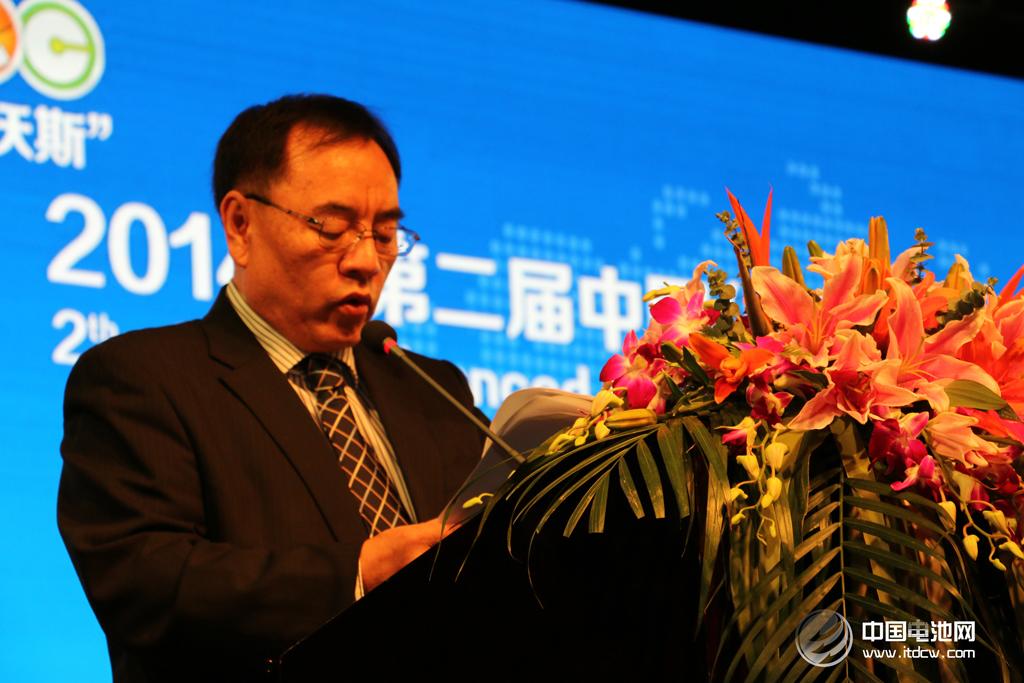 """第二届锂电""""达沃斯""""论坛学术委员会主席、北京大学教授其鲁"""