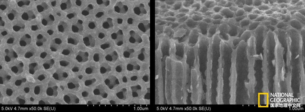 微型电池将带来绿色能源革命