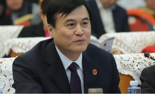 江淮汽车集团董事长安进:新能源车要走大众化路线应加大补贴力度