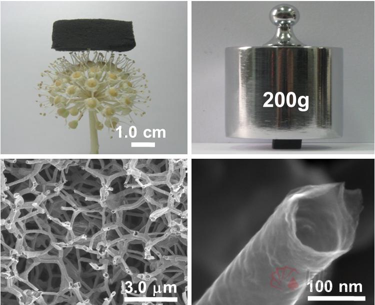 图1三维石墨烯管宏观和微观形貌