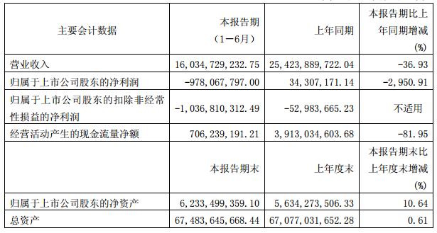 云天化:上半年净亏9.78亿 拟5250万元认购子公司纽米科技定增股份