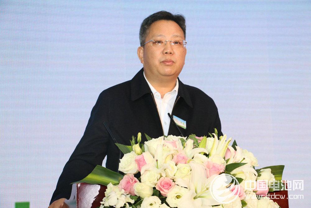 中国沃特玛新能源汽车产业创新联盟理事长李瑶