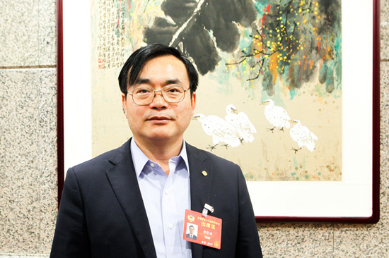 全国政协委员、协鑫(集团)控股有限公司副总裁柳崇禧
