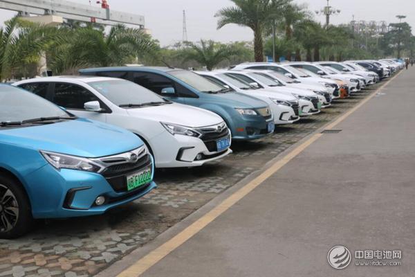 比亚迪园区内随处可见的新能源车车牌