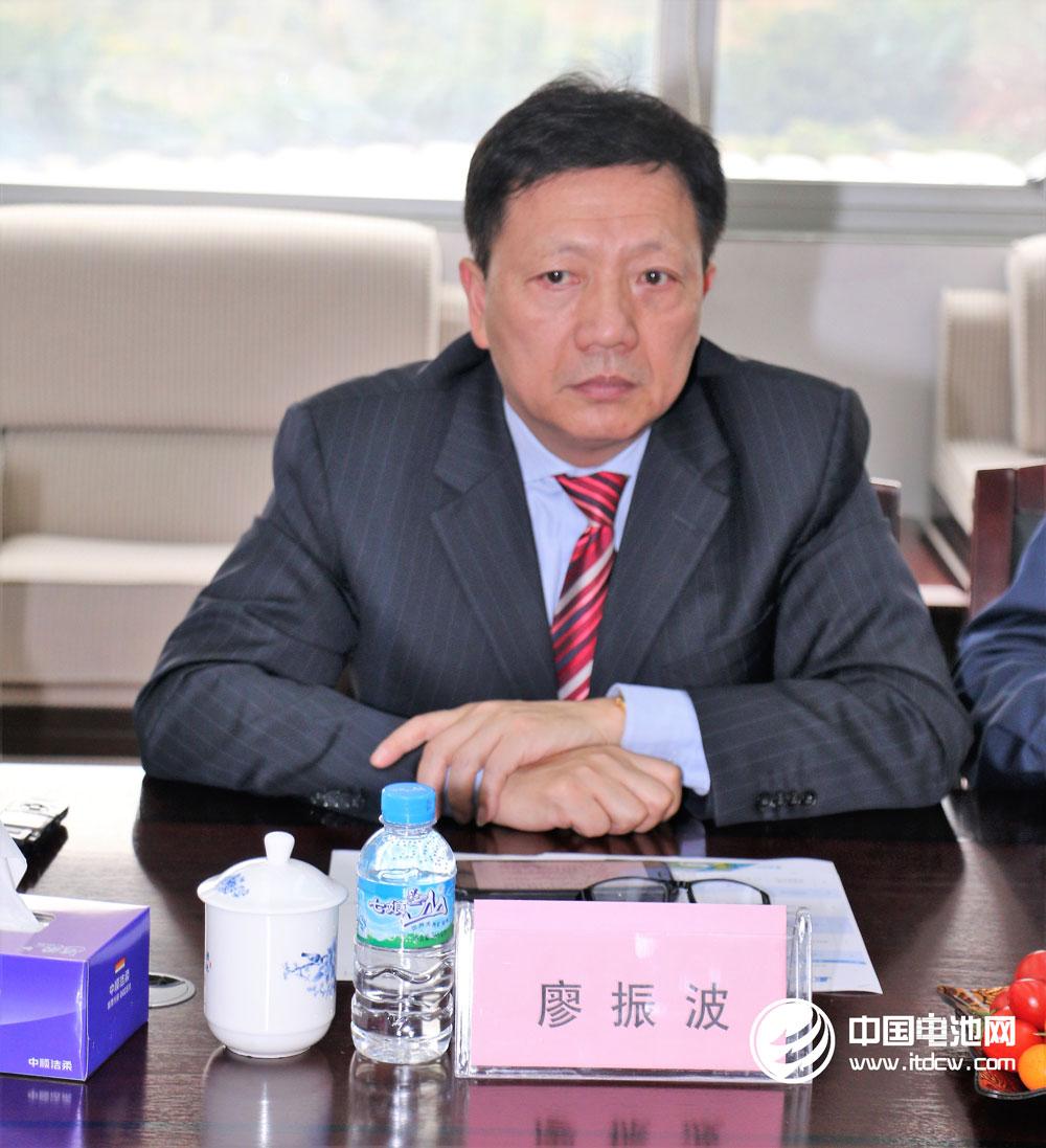 比克电池战略规划副总裁廖振波