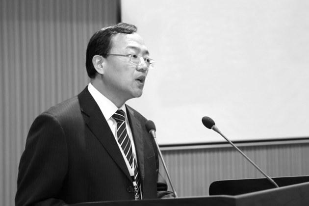 东旭光电新能源汽车产业负责人李泉年