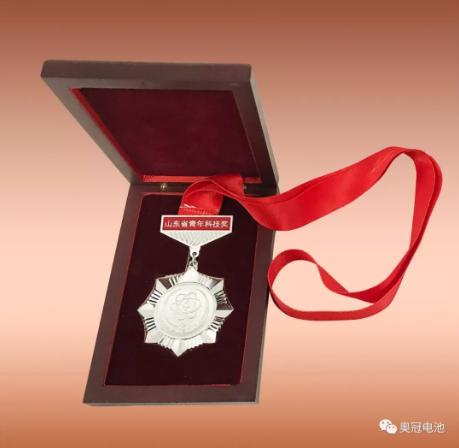 青年科技奖奖章