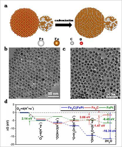 图1. a)合成示意图;b)PtFe-Fe3O4纳米粒子;c)PtFe-Fe2C纳米粒子;d)DFT计算