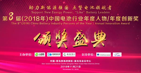 中国电池行业年度人物奖/年度创新奖