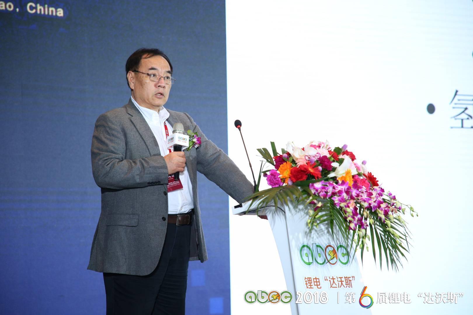 """北京大学教授、锂电""""达沃斯""""学术委员会主席其鲁"""