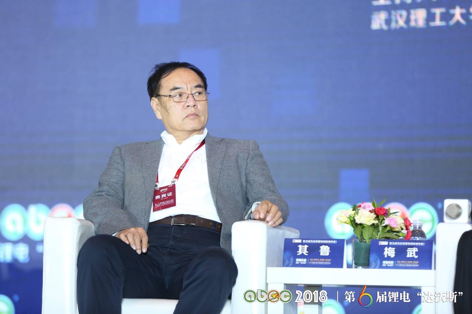 """北京大学教授、锂电""""达沃斯""""学术委员会主席其鲁教授"""