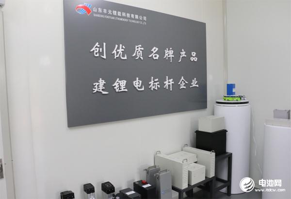 山东丰元锂能科技有限公司