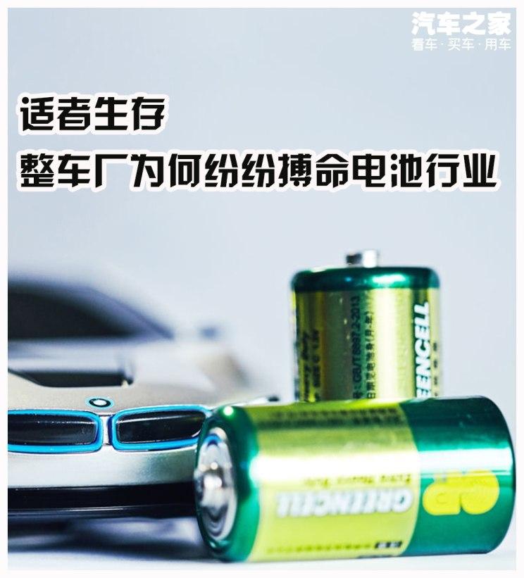 新能源汽车,动力电池