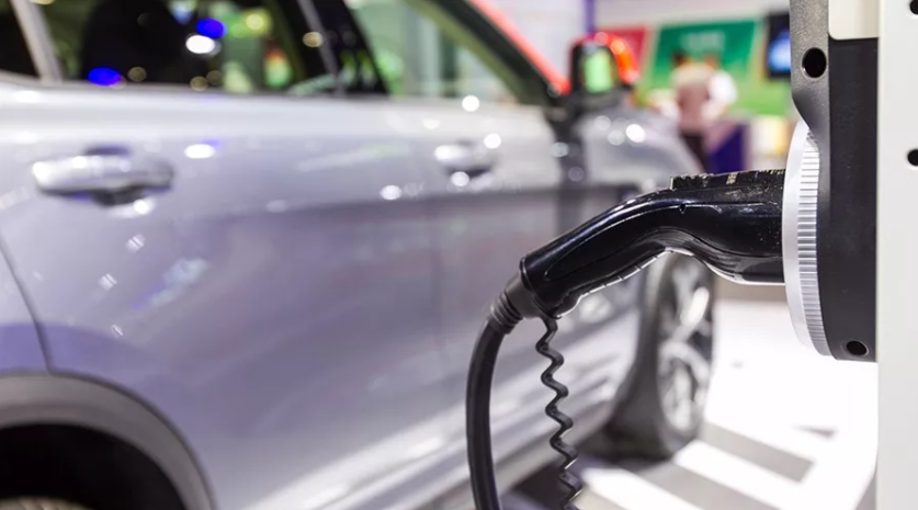 新能源车担纲增长重任 1月比亚迪纯电动车销16219辆