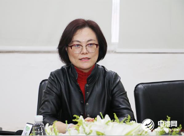中国电池新能源产业链调研团一行与宝优际相关领导交流、座谈