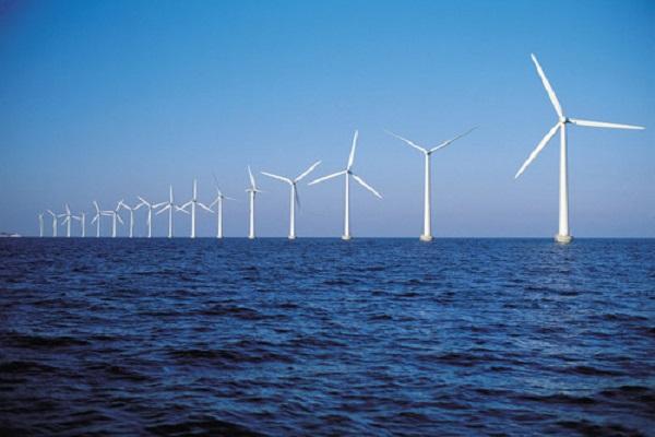 今年风电定价下调将成趋势 新老划断有两种方案