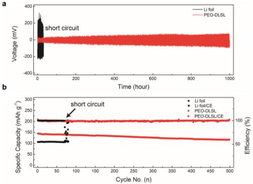 中国科大仿硅藻土多级结构研制高性能固态锂电池复合负极