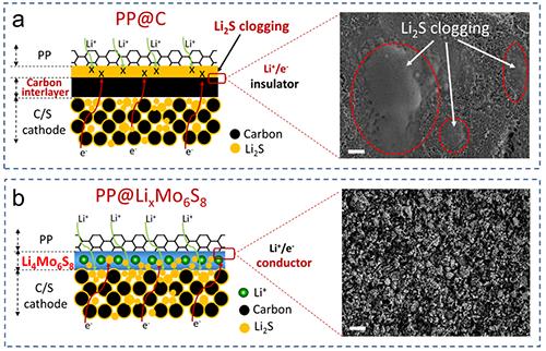 图4. PP@LixMo6S8功能隔膜与涂覆碳PP@C隔膜对比图