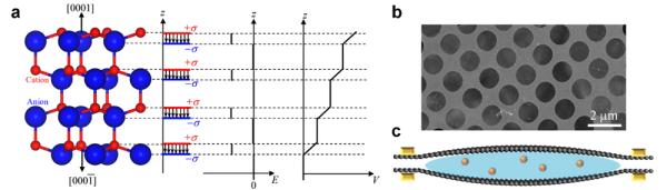 BeO纤锌矿结构极性原子模型与石墨烯液相反应池