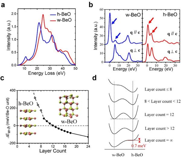 物理所等用原位电镜石墨烯液相反应池生长BeO新型二维晶体结构