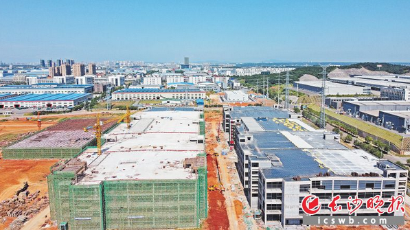 比亚迪宁乡动力电池生产基地项目主要生产厂房4号栋和5号栋均已封顶