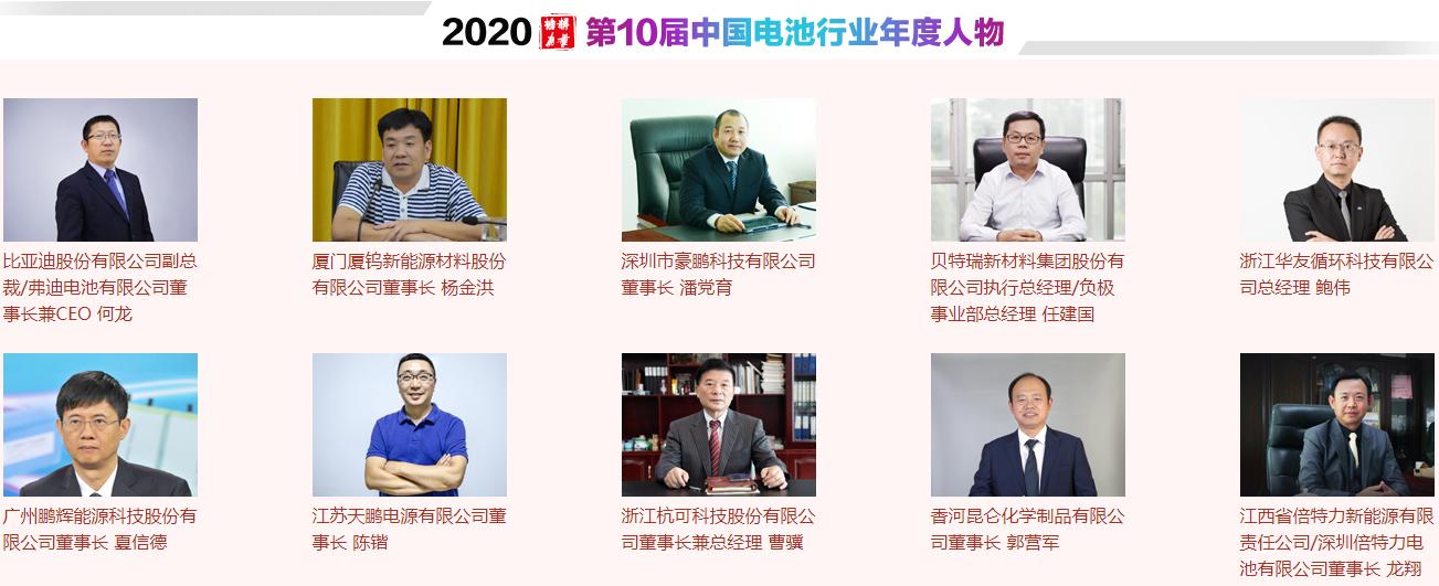 中国电池行业年度人物