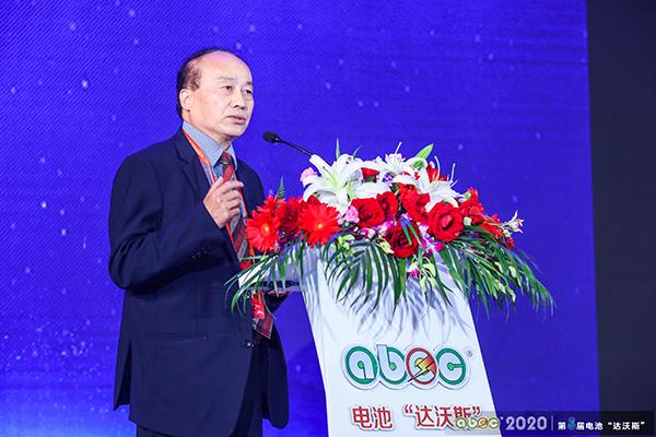 加拿大国家工程院院士/加拿大皇家科学院院士/上海大学可持续能源研究院院长张久俊